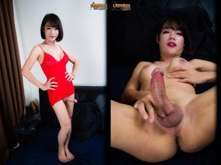 Bee - A Sweet Cum From Bee [HD 720p] ( 2019 / 452.13 Mb)