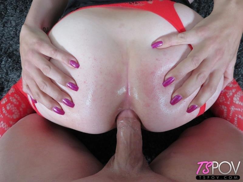 Transangel Porn