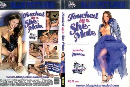 Male on Shemale - Touched By A She-Male [SD] ( 2020 / 1.87 Gb)