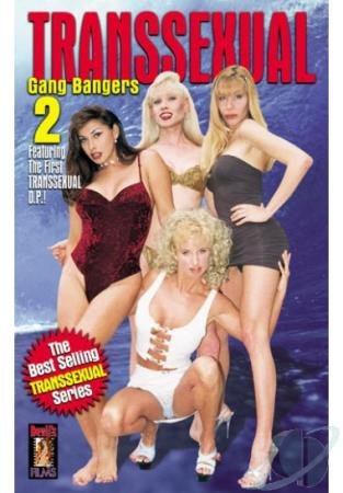 Vanity, Gina, Olivia Love, Shana, Skylar, The Geyser, Lisa Lawerence, Brandi Scott - Transsexual Gang Bangers #2 [SD] ( 2020 / 710.06 Mb)