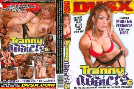 Fernanda, Julian, Christian, Troy, Mora, Morena - Tranny Addicts 6 [SD] ( 2020 / 666.91 Mb)