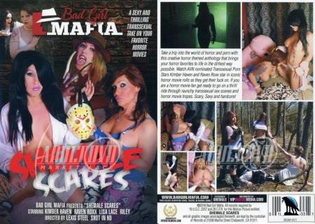Kimber Haven,Lisa Lace,Raven Roxx,Riley - Shemale Scares [SD] ( 2021 / 1,02 Gb)